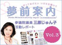yumesaki_v3