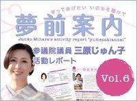 yumesaki_v6